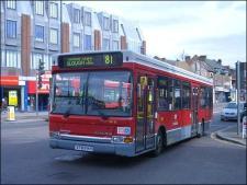 81 bus