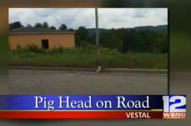Vestal mosque pig's head