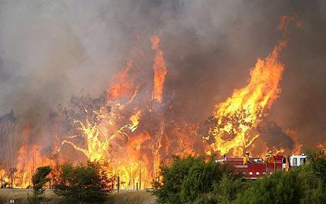 Australian+bushfire