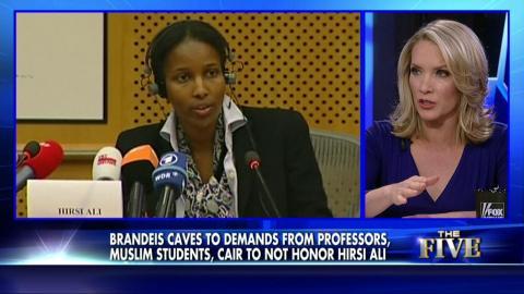 Fox News Hirsi Ali